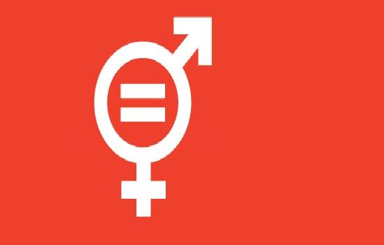 Sessione delle Nazioni Unite sulla condizione della donna. Fra le buone prassi adottate anche quella della cooperativa sociale FAI del FVG
