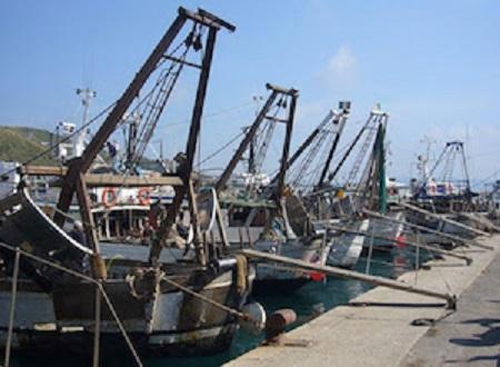 Pesca: il Distretto Nord Adriatico consegna al Governo le istanze delle associazioni, che chiedono attenzione alla sostenibilità